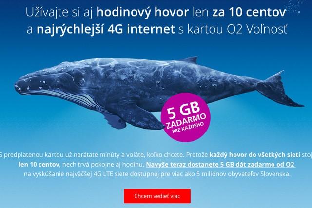 Předplacenka na Slovensku nabízí levnější služby
